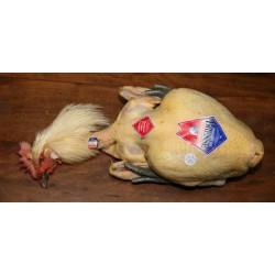 Les poulets de Bresse  - 18,50 €/le kg [le prix vous sera communiqué et à régler à la livraison]
